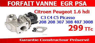 Forfait vanne egr Peugeot